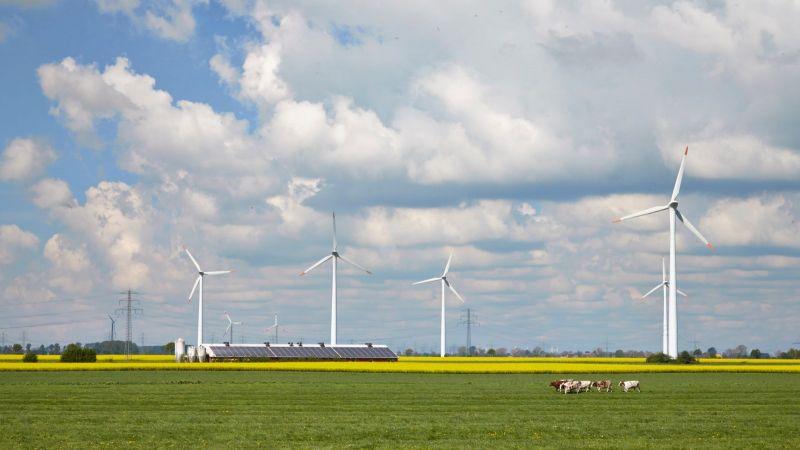 Das Bild zeigte eine Ackerlandschaft in Norddeutschland, in deren Hintergrund Windräder zu sehen sind.