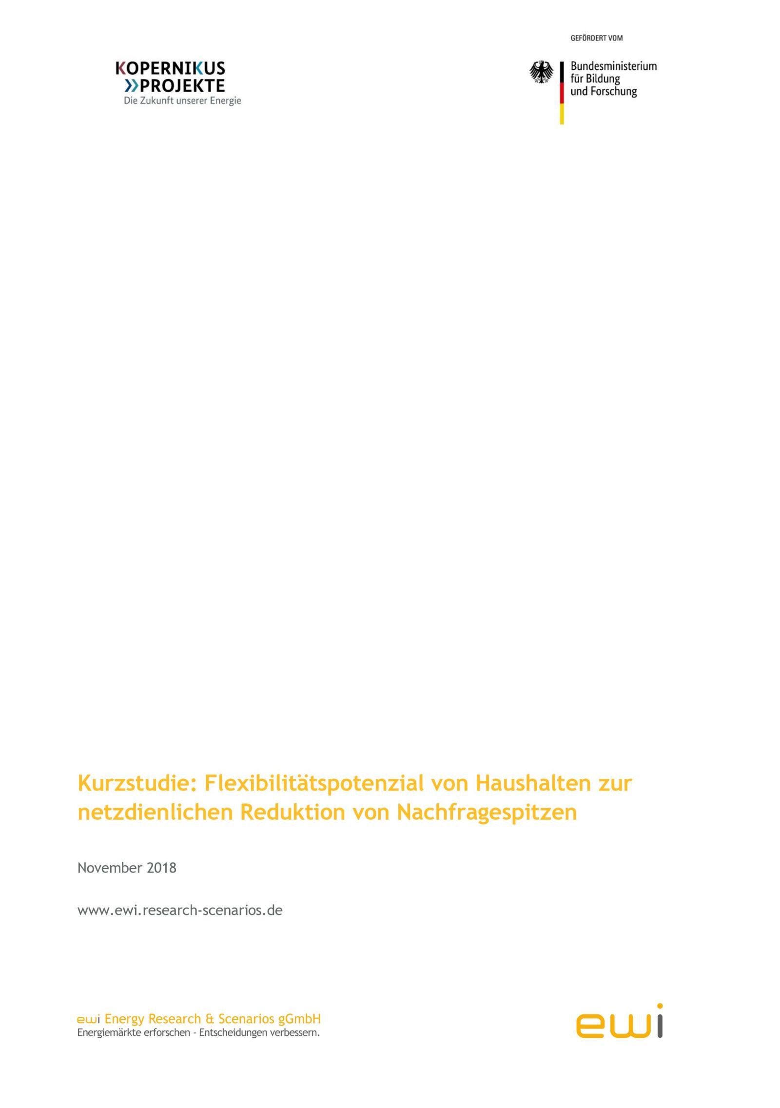 Das Bild zeigt die Titelseite der Studie zu Flexibilitätspotenzialen.