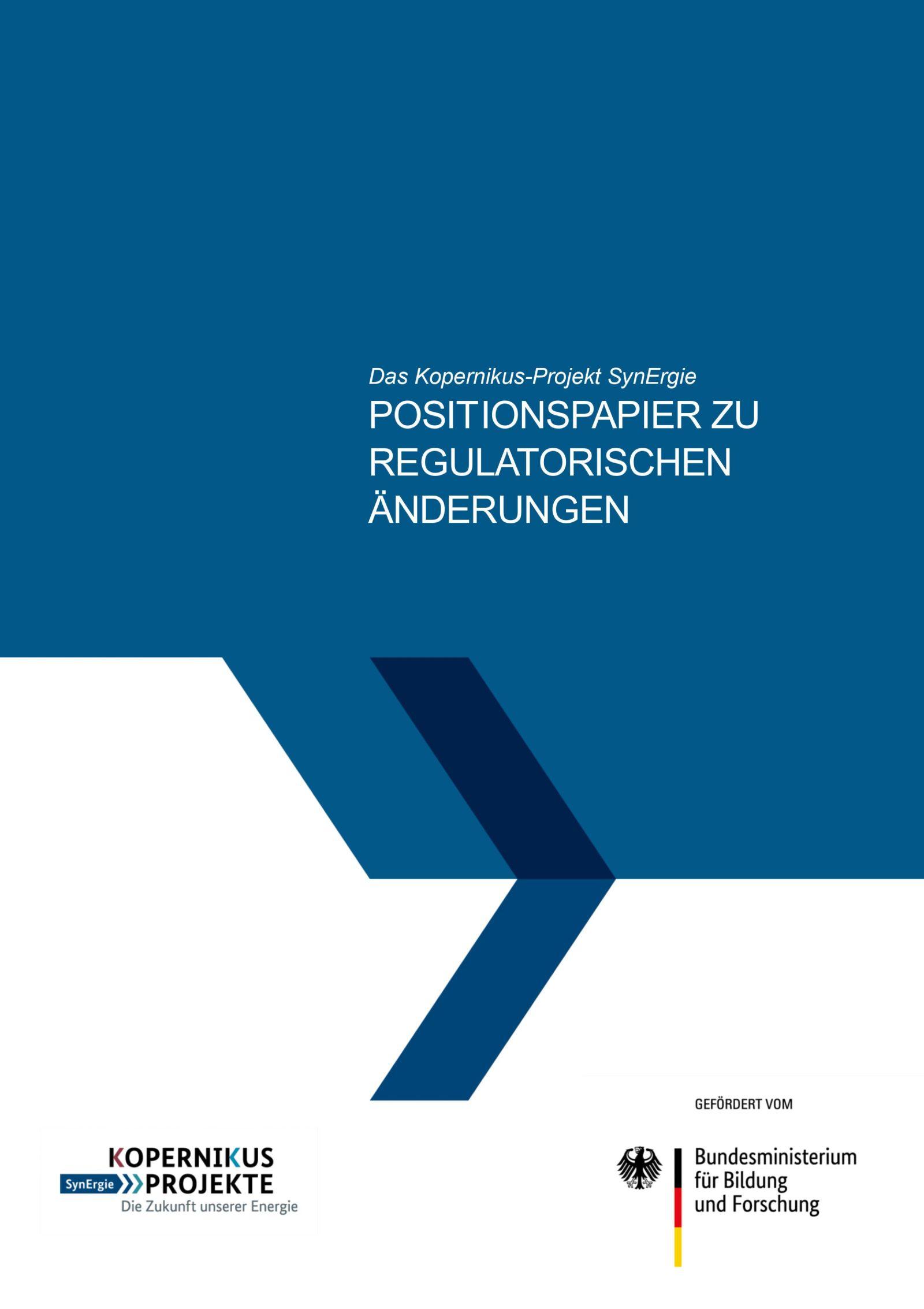 Das Bild zeigt das Covers des SynErgie-Positionspapiers zu regulatorischen Änderungsbedarfen.